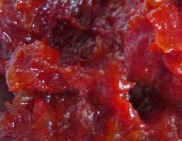 salsa-chutneyd
